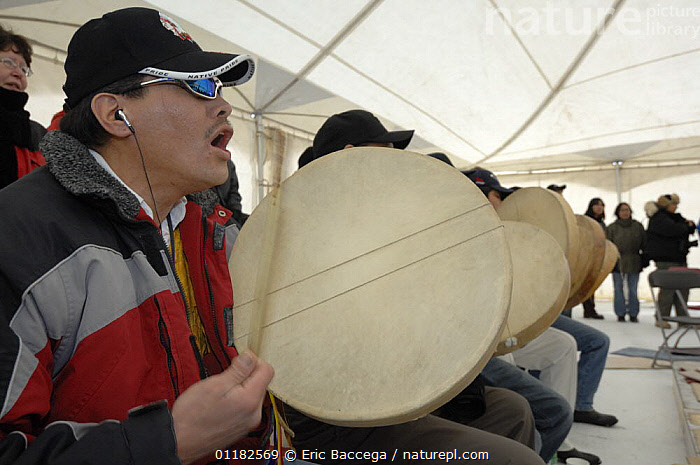 Dene people singing traditional song and playing Hand games, Yellowknife, Northwest Territories, Canada March 2007  ,  BEHAVIOUR,CANADA,GROUPS,NORTH AMERICA,PEOPLE,TRADITIONAL,TRIBES  ,  Eric Baccega