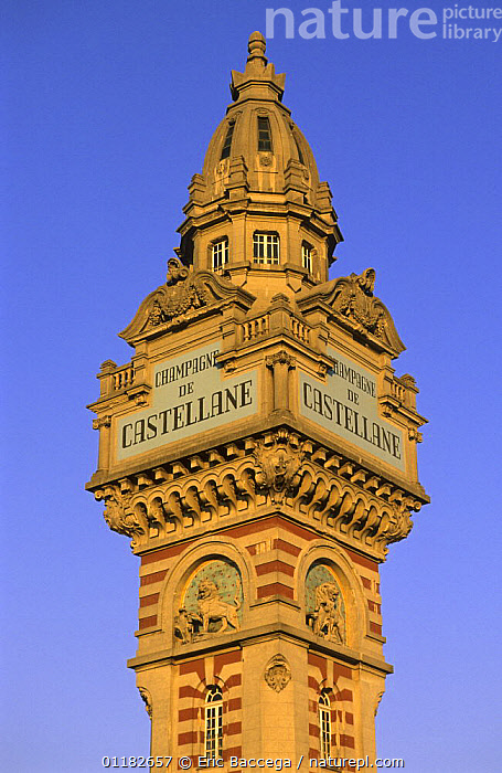 The Castellane tower in Epernay, C�te de Blancs vineyard, Champagne country, France  ,  ARCHITECTURE,BUILDINGS,EUROPE,VERTICAL,VINEYARDS  ,  Eric Baccega