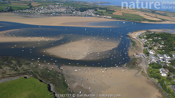 Aerial view of the village of Rock with Padstow in background across the River Camel estuary at low tide, Cornwall, England 2007  ,  AERIALS,COASTS,estuaries,HORIZONTAL,LANDSCAPES,river,SUMMER,villages,ENGLAND,Europe  ,  Dan Burton