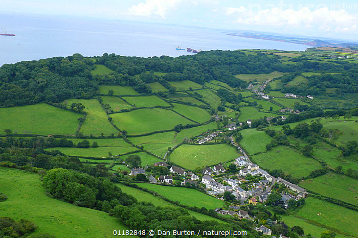 Aerial views of village with the shipwrecked 'Napoli' on background coastline, near Sidmouth and Branscombe, Devon, UK, 2007  ,  AERIALS,COUNTRYSIDE,EUROPE,FIELDS,LANDSCAPES,UK,VILLAGES,United Kingdom,British,ENGLAND, United Kingdom, United Kingdom  ,  Dan Burton