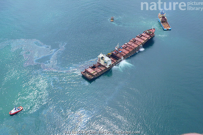 Aerial view of the shipwrecked 'Napoli' with tugs and oil spill visible on water's surface, near Sidmouth and Branscombe, Devon, UK, 2007  ,  AERIALS,BOATS,ENVIRONMENT,ENVIRONMENTAL,EUROPE,LANDSCAPES,OIL,SHIPS,SLICK,SPILL,SPILLAGE,UK,United Kingdom,British,ENGLAND, United Kingdom, United Kingdom, United Kingdom, United Kingdom, United Kingdom, United Kingdom  ,  Dan Burton