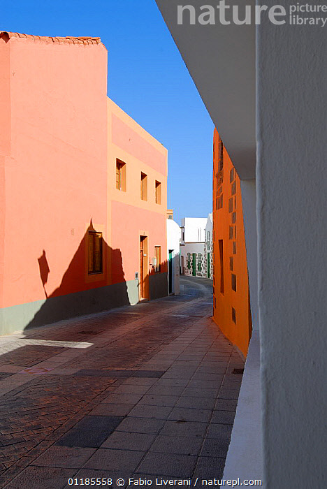 Narrow back-streets of Aguimes Village, Gran Canaria Island, the Canaries, Spain, September 2007  ,  ATLANTIC ISLANDS,BUILDINGS,CANARIES,LANDSCAPES,ROADS,TOWNS,VERTICAL,VILLAGES,Europe  ,  Fabio Liverani