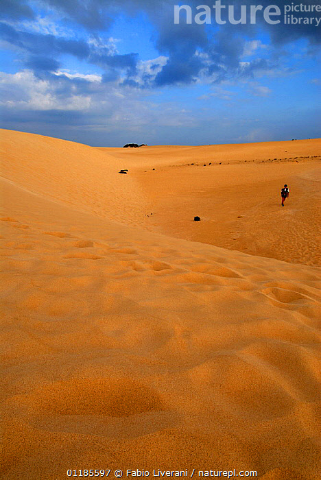 Persob walking on the Coralejo Dunes Natural Reserve, Fuerteventura, Canary Isles, Spain, September 2007  ,  ATLANTIC ISLANDS,CANARIES,DESERTS,DRAMATIC,LANDSCAPES,PEOPLE,RESERVE,SAND DUNES,SKIES,TOURISM,VERTICAL,Europe  ,  Fabio Liverani