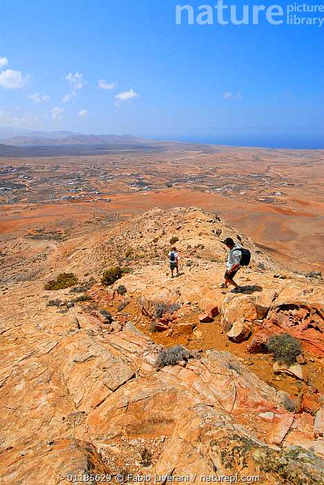 People walking on the Sacred Mountain of Tindiya, Fuerteventura, Canary Isles, Spain, September 2007  ,  ATLANTIC ISLANDS,CANARIES,COASTS,LANDSCAPES,LEISURE,MOUNTAINS,PEOPLE,TOWNS,VERTICAL,Europe  ,  Fabio Liverani