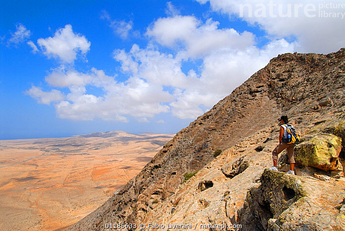 Woman looking at the view from the Sacred Mountain of Tindiya, Fuerteventura, Canary Isles, Spain, September 2007  ,  ARID,ATLANTIC ISLANDS,CANARIES,HIKING,LANDSCAPES,LEISURE,MOUNTAINS,PEOPLE,WALKING,Europe  ,  Fabio Liverani