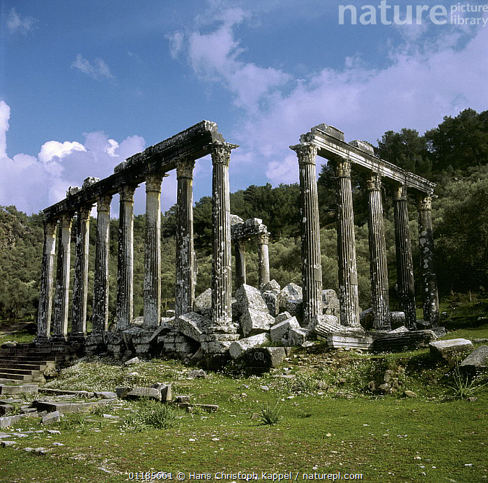 Temple of Zeus at Euromos, Turkey  ,  ANCIENT,ASIA,BUILDINGS,MIDDLE-EAST  ,  Hans Christoph Kappel