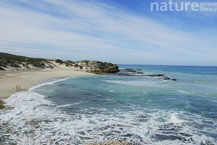 Marine reserve, DeHoop Nature reserve, Western Cape, South Africa  ,  AFRICA,BEACHES,COASTS,LANDSCAPES,RESERVE,SEA,SOUTHERN AFRICA  ,  Tony Phelps