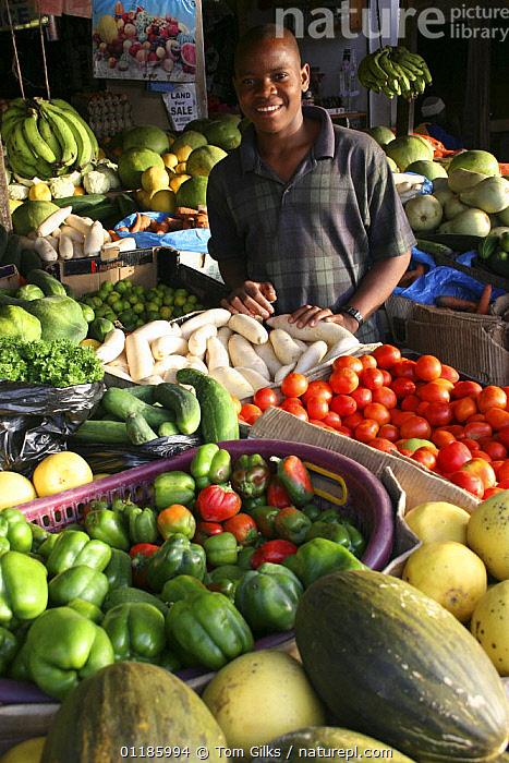 Young AFrican man working in fruit and vegetable market stall, Bakau market, Gambia, 2007  ,  AFRICA,FRUIT,GAMBIA,MARKET,PEOPLE,PORTRAITS,TRADE,VEGETABLES,VERTICAL,WEST AFRICA,Plants,WEST-AFRICA  ,  Tom Gilks