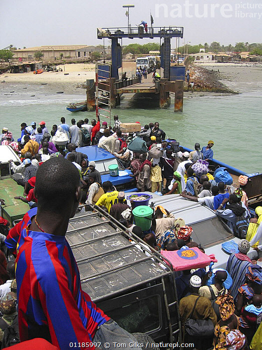 Ferry crossing River Gambia from Banjul, docking at Barra, Gambia, 2007  ,  AFRICA,BOATS,PEOPLE,RIVERS,TRANSPORT,VERTICAL,WEST AFRICA,WEST-AFRICA  ,  Tom Gilks