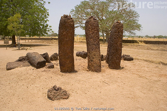 Wassu stone circles, Wassu, Gambia, 2007 Note - 2.5m high and constructed 500AD  ,  AFRICA,ANCIENT,HISTORIC,MONUMENT,MONUMENTS,THREE,WEST AFRICA,WEST-AFRICA  ,  Tom Gilks