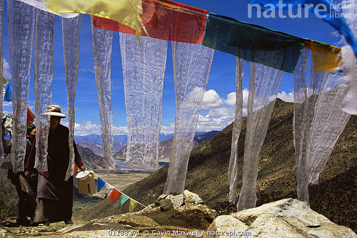 Prayer Flags and people at the Xiongse nunnery, Tibet  2007  ,  ASIA,BUDDHISM,BUDDHIST,CULTURES,LANDSCAPES,MOUNTAINS,PEOPLE,TRADITIONAL,WOMAN,CHINA  ,  Gavin Maxwell