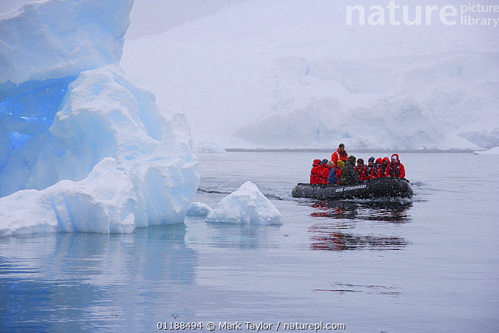 Tourists in zodiac boat viewing icebergs. Antarctica.  ,  ANTARCTICA,BOATS,ICEBERG,LANDSCAPES,PEOPLE,POLAR,TOURISM,WHITE  ,  Mark Taylor