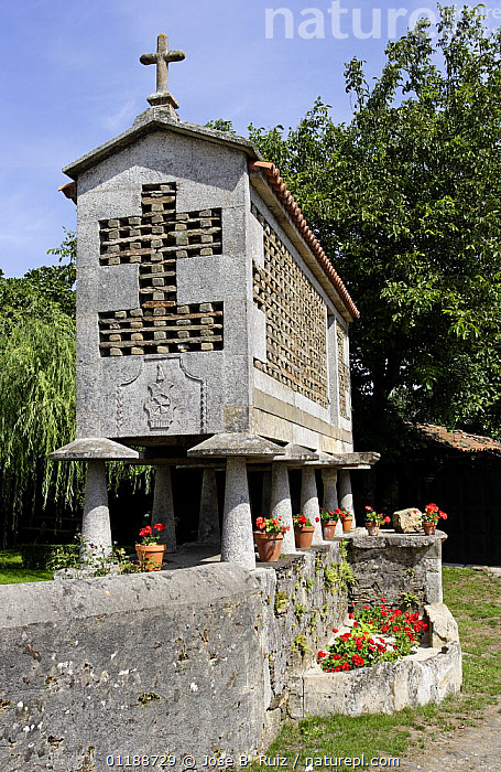 Horreo (traditional stone granary built on stilts to avoid access of rodents) in Galicia, Spain  ,  architecture,ARTIFACTS,BUILDINGS,EUROPE,food stores,LANDSCAPES,SPAIN,TRADITIONAL,VERTICAL  ,  Jose B. Ruiz