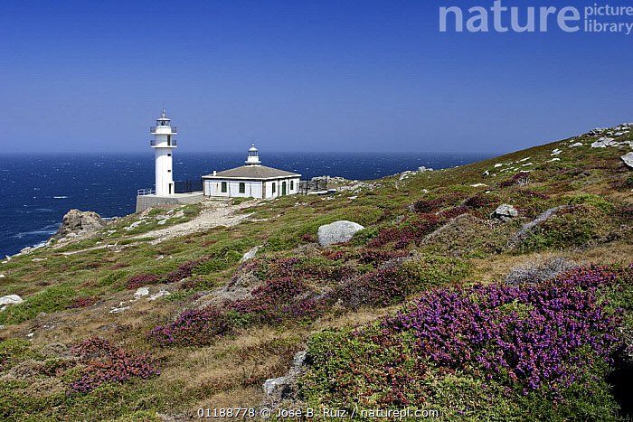 Lighthouse on Cape Tourinan, Costa da Morte, Galicia, Spain  ,  ATLANTIC OCEAN,BUILDINGS,COASTS,EUROPE,HEATHLAND,LANDSCAPES,LIGHTHOUSES,SPAIN,Marine  ,  Jose B. Ruiz