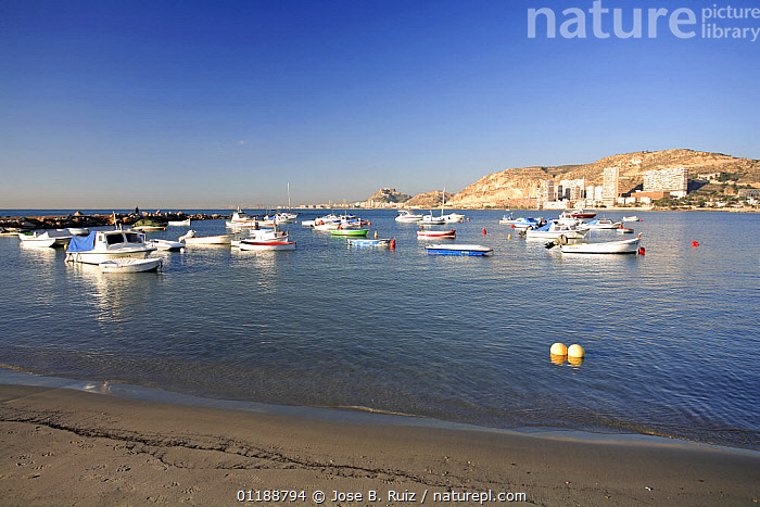 Boats in the harbour at Alicante, Spain  ,  BEACHES,BOATS,BUILDINGS,CITIES,COASTS,EUROPE,LANDSCAPES,MEDITERRANEAN,OCEAN,PALMS,SPAIN,URBAN  ,  Jose B. Ruiz