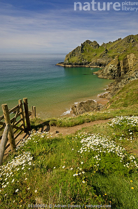 Coastal path at Prawle Point, South Devon, 2007  ,  COASTS,EUROPE,FOOTPATH,GATE,LANDSCAPES,PATHS,SEA,UK,United Kingdom,British,ENGLAND, United Kingdom, United Kingdom, United Kingdom  ,  Adrian Davies