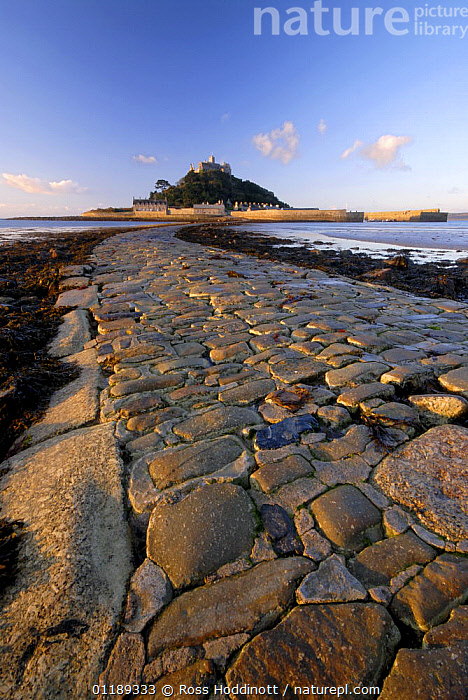 Causeway out to St Michaels Mount exposed at low tide, Cornwall, UK.  ,  BUILDINGS,COASTS,CORNWALL,EUROPE,LANDSCAPES,UK,VERTICAL,United Kingdom,British,ENGLAND, United Kingdom, United Kingdom, United Kingdom  ,  Ross Hoddinott