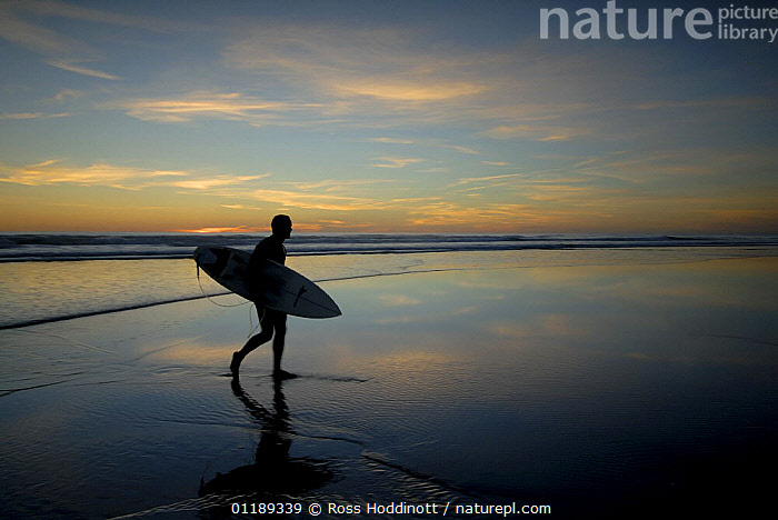 Surfer carrying surfboard up beach silhouetted at sunset, Sandymouth bay, Cornwall, UK  ,  BEACHES,COASTS,CORNWALL,EUROPE,LANDSCAPES,LEISURE,PEOPLE,SILHOUETTES,SURFING,UK,United Kingdom,British,ENGLAND,SPORTS, WATERSPORTS, United Kingdom, WATERSPORTS, United Kingdom, WATERSPORTS, United Kingdom  ,  Ross Hoddinott