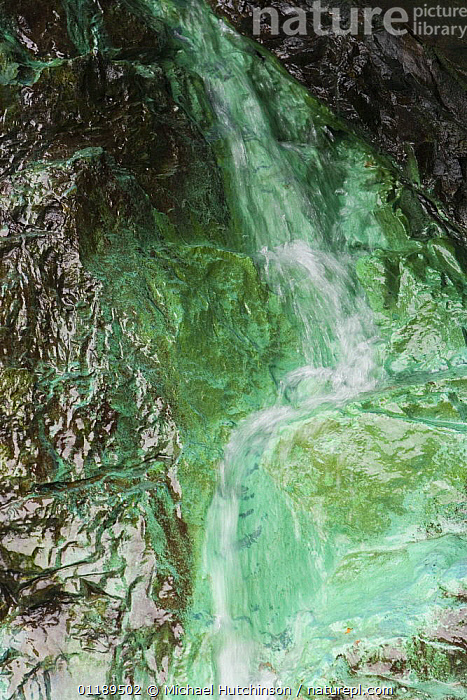 Rock stained green by oxidized copper run-off from Levant copper mine, nr Trewellard, Pendeen, Cornwall  ,  ARTY,EUROPE,GREEN,ROCKS,UK,VERTICAL,United Kingdom,British  ,  Michael Hutchinson