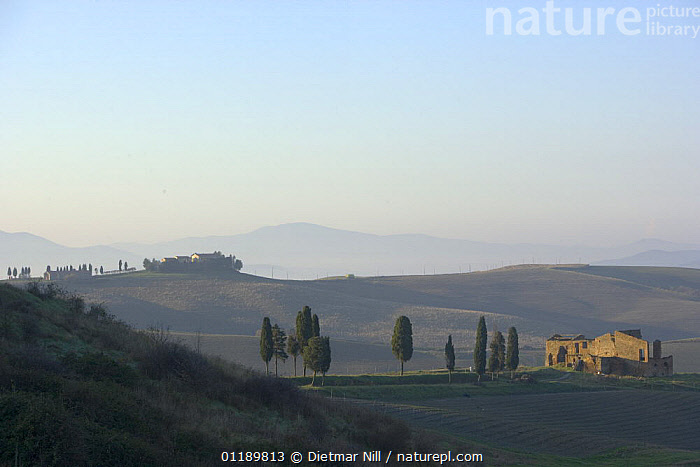 A typical Tuscan landscape in Volterra, Italy  ,  BUILDINGS,DAWN,EUROPE,HILLS,ITALY,LANDSCAPES,SUNRISE,TUSCANY  ,  Dietmar Nill