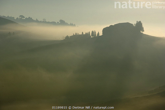 A typical Tuscan landscape in Volterra, Italy  ,  ATMOSPHERIC,BUILDINGS,DAWN,EUROPE,HILLS,ITALY,LANDSCAPES,MIST,SHADOWS,SILHOUETTES,SUNRISE,TUSCANY  ,  Dietmar Nill