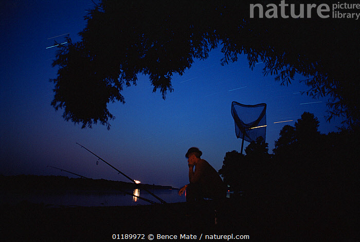 Fisherman at night on lake side, with star trails in background, Hungary.  ,  PEOPLE,FISHERMAN,FISHERMEN,FISHERS,MOOD,CALM,TIREDNESS,EUROPE,EASTERN EUROPE,EAST EUROPE,HUNGARY,OUTER SPACE,SPACE,THE UNIVERSE,UNIVERSE,STAR TRAIL,SKY,TWILIGHT,NIGHT  ,  Bence  Mate