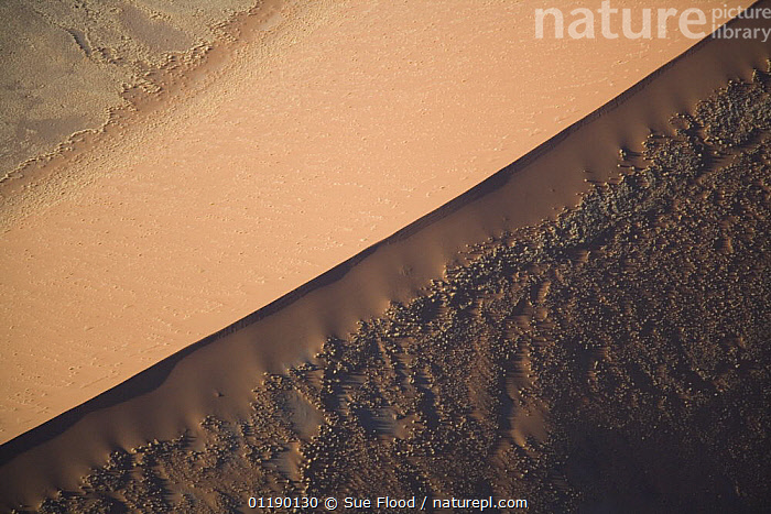 Aerial view of a sand dune in Sossusvlei, Namibia  ,  ABSTRACT,AERIALS,AFRICA,ARTY SHOTS,GEOLOGY,LANDSCAPES,SAND DUNES,SOUTHERN AFRICA,Deserts  ,  Sue Flood