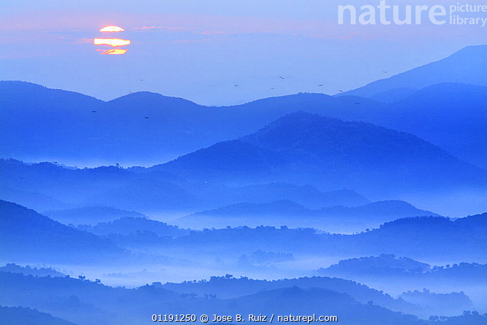 View of fields and mountains with sun rising in the mist, Montellano, Seville, Spain, ATMOSPHERIC,BLUE,DAWN,EUROPE,LANDSCAPES,MIST,MOUNTAINS,PEACEFUL,SCENIC,SPAIN,SUNRISE,Concepts, Jose B. Ruiz