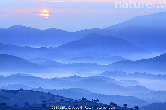 View of country house, fields and mountains with sun rising in the mist, Montellano, Seville, Spain, ATMOSPHERIC,BLUE,DAWN,EUROPE,LANDSCAPES,MIST,MOUNTAINS,PEACEFUL,SCENIC,SPAIN,SUNRISE,Concepts, Jose B. Ruiz