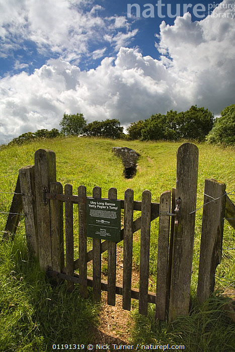 Hetty Pegler's Tump long barrow, prehistoric burial chamber, Cotswolds, Gloucestershire  ,  ANCIENT,ARCHEAOLOGY,BARROWS,EUROPE,GATES,LANDSCAPES,OLD,ROCKS,SIGNS,TOURISM,UK,ULEY,VERTICAL,United Kingdom,British  ,  Nick Turner