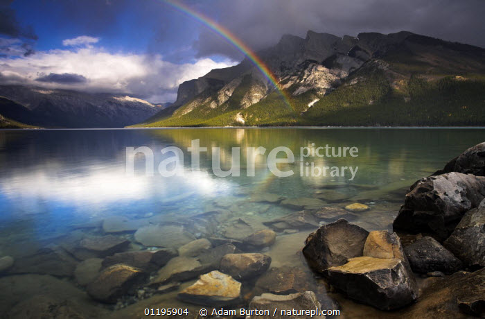 Rainbow over the waters of Lake Minnewanka, glacial lake in Banff National Park, Alberta, Canada  ,  ATMOSPHERIC,LAKES,LANDSCAPES,MOUNTAINS,NORTH AMERICA,NP,PEACEFUL,RAINBOWS,REFLECTIONS,RESERVE,ROCKS,Concepts,Weather,National Park,CANADA,,Canadian Rocky Mountain Parks World Heritage Site, UNESCO World Heritage Site,Rocky Mountains,Rockies,NP,Reserve,  ,  Adam Burton