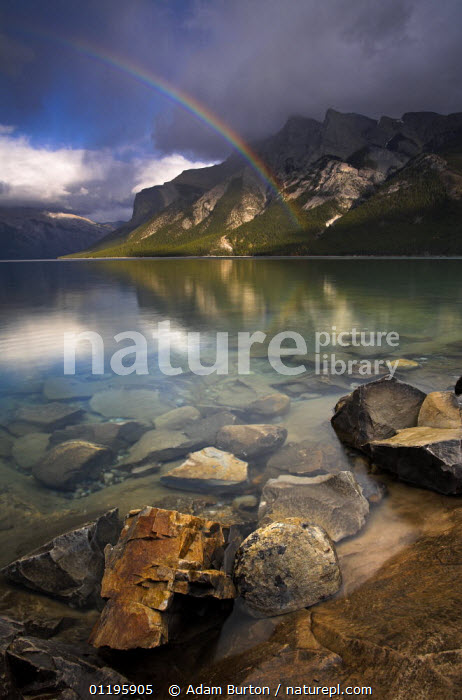 Rainbow over the waters of Lake Minnewanka, glacial lake in Banff National Park, Alberta, Canada  ,  ATMOSPHERIC,LAKES,LANDSCAPES,MOUNTAINS,NORTH AMERICA,NP,PEACEFUL,RAINBOWS,REFLECTIONS,RESERVE,ROCKS,VERTICAL,Concepts,Weather,National Park,CANADA,,Canadian Rocky Mountain Parks World Heritage Site, UNESCO World Heritage Site,Rocky Mountains,Rockies,NP,Reserve,  ,  Adam Burton