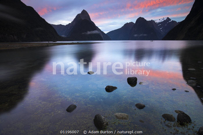 Sunrise at Milford Sound, Fiordland National Park, South Island, New Zealand *Not available for 2013 retail calendars in Germany, Austria and Switzerland*  ,  AUSTRALASIA,DAWN,FIORDS,FJORDS,LANDSCAPES,MITRE,MOUNTAINS,NEW ZEALAND,NP,PEAK,REFLECTIONS,RESERVE,RIVERS,SUNRISE,National Park  ,  Adam Burton