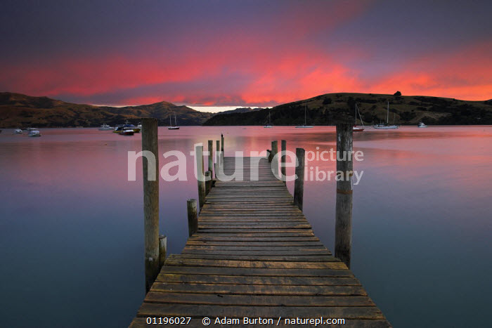 Sunrise over Akaroa harbour, Canterbury, South Island, New Zealand  ,  AUSTRALASIA,JETTIES,LAKES,LANDSCAPES,NEW ZEALAND,NP,PEACEFUL,PIERS,PINK,RESERVE,SUNSET,Concepts,National Park  ,  Adam Burton