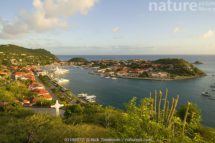 View of a harbour, St Barts  ,  barths,BOATS,BUILDINGS,CARIBBEAN,COASTS,HARBOURS,HORIZONTAL,KETCHES,LANDSCAPES,SAILING BOATS,Saint Barthelemy,SUPERYACHTS,YACHTS, SAILING-BOATS , SAILING-BOATS , SAILING-BOATS , SAILING-BOATS , SAILING-BOATS  ,  Rick Tomlinson