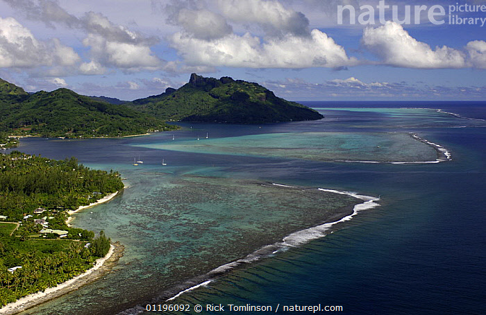 Aerial view of Huahine Island and reef, French Polynesia  ,  BOATS,COASTS,CORAL REEFS,ISLANDS,KETCHES,LANDSCAPES,PACIFIC ISLANDS,SAILING BOATS,South Pacific,SUPERYACHTS,YACHTS,Marine,FRENCH POLYNESIA, SAILING-BOATS , SAILING-BOATS  ,  Rick Tomlinson