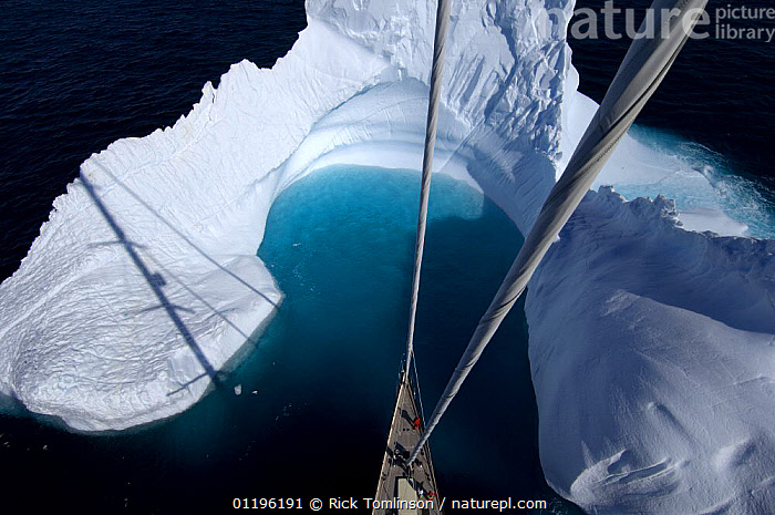 """Aerial view, taken from the mast, of SY """"Adele""""'s bow in the bay of an iceberg, Portal Point, Reclus Pennisula, Antarctica, January 2007 Non editorial uses must be cleared individually.  ,  ABOARD,ANTARCTICA,BOATS,BOWS,COASTS,CRUISING,FOREDECKS,Gerlache Strait,HIGH ANGLE SHOT,ICEBERGS,KETCHES,masthead,mast head,mastheads,POLAR,SAILING BOATS,shadows,SUPERYACHTS,YACHTS, SAILING-BOATS , SAILING-BOATS , SAILING-BOATS , SAILING-BOATS , SAILING-BOATS , SAILING-BOATS , SAILING-BOATS  ,  Rick Tomlinson"""