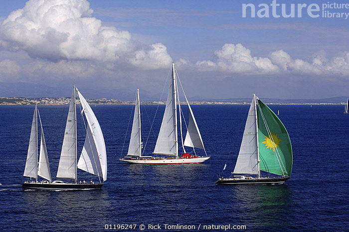 """SY """"Adele"""" (middle), 180 foot Hoek Design, at the Superyacht Cup Palma, October 2005  ,  AERIALS,Balearic Islands,BALEARIC ISLANDS,Bay of Palma,BOATS,COASTS,EUROPE,HORIZONTAL,KETCHES,mallorca,PROFILE,RACES,RACING,SAILING BOATS,SUPERYACHTS,THREE,YACHTS, SAILING-BOATS , SAILING-BOATS , SAILING-BOATS , SAILING-BOATS , SAILING-BOATS  ,  Rick Tomlinson"""