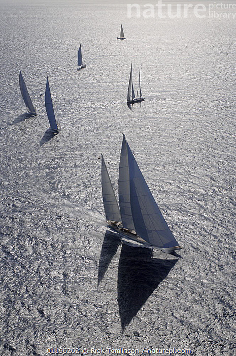 """SY """"Adele"""", 180 foot Hoek Design, at the Superyacht Cup Palma, October 2005 Non editorial uses must be cleared individually.  ,  AERIALS,Balearic Islands,BALEARIC ISLANDS,Bay of Palma,BOATS,EUROPE,FLEETS,KETCHES,mallorca,RACES,RACING,SAILING BOATS,SAILS,shadows,SILHOUETTES,silvery,SUPERYACHTS,VERTICAL,YACHTS, SAILING-BOATS , SAILING-BOATS , SAILING-BOATS , SAILING-BOATS , SAILING-BOATS , SAILING-BOATS , SAILING-BOATS  ,  Rick Tomlinson"""