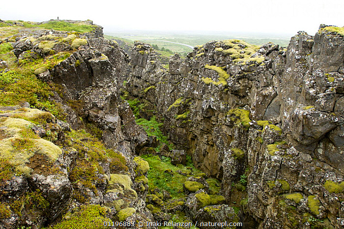 Fault line between America and Europe at Pingvellir, the first parliament place in the world. Pingvellir National Park, Iceland  ,  CLIFFS,EUROPE,GEOLOGY,LANDSCAPES,NP,RESERVE,TECTONICS,National Park  ,  Inaki Relanzon