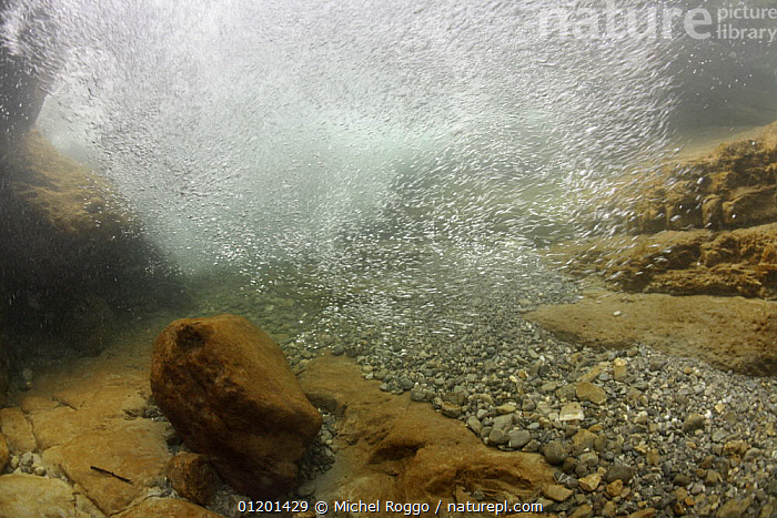 Underwater landscape with turbulent water in mountain creek, Mot�lon, Gruy�res, Fribourg, Swiss Alps, Switzerland, March, ALPINE,AQUATIC,BUBBLES,EUROPE,FRESHWATER,LANDSCAPES,RIVERS,ROCKS,SPRING,TEMPERATE,TURBULENCE,UNDERWATER, Michel Roggo