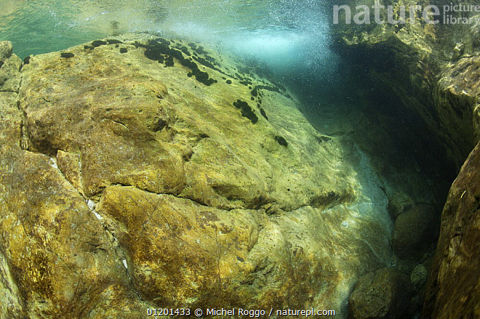 Underwater landscapes in Lepena river, Slovenia, June, AQUATIC,EUROPE,FRESHWATER,LANDSCAPES,RIVERS,ROCKS,SHALLOW,SURFACE,TEMPERATE,UNDERWATER, Michel Roggo