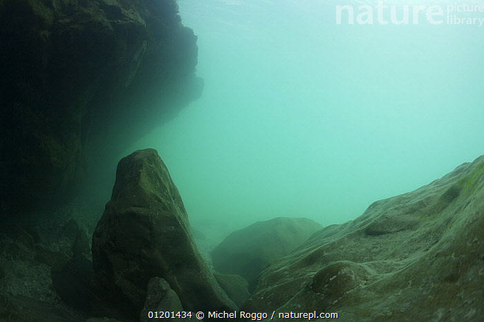 Underwater landscape in Soca river, Slovenia, June, AQUATIC,CLOUDY,EUROPE,FRESHWATER,LANDSCAPES,RIVERS,ROCKS,TEMPERATE,TURBULENCE,TURQUOISE,UNDERWATER, Michel Roggo