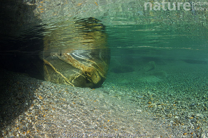 Underwater landscape in Verzasca River, Tessin, Switzerland, October, AQUATIC,AUTUMN,EUROPE,FRESHWATER,LANDSCAPES,REFLECTIONS,RIVERS,ROCKS,SURFACE,TEMPERATE,UNDERWATER, Michel Roggo