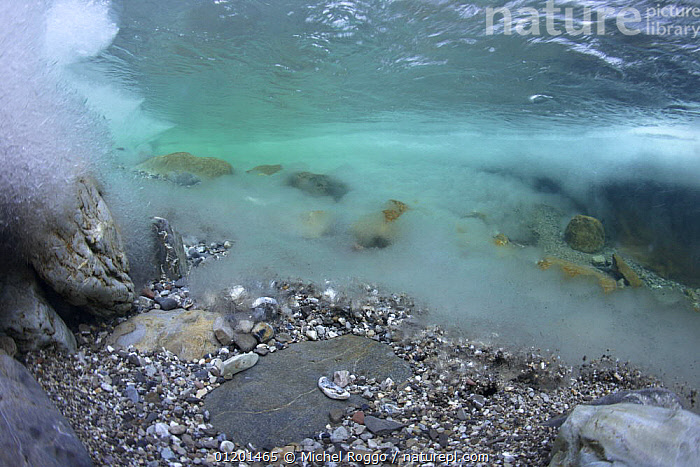 Underwater landscape in Hongrin River with ice on the river bed and surface in winter. Fribourg, Gruy�re, Switzerland, December, AQUATIC,EUROPE,FRESHWATER,GRUYERE,ICE,LANDSCAPES,RIVERBED,RIVERS,ROCKS,SURFACE,TEMPERATE,UNDERWATER,WINTER, Michel Roggo