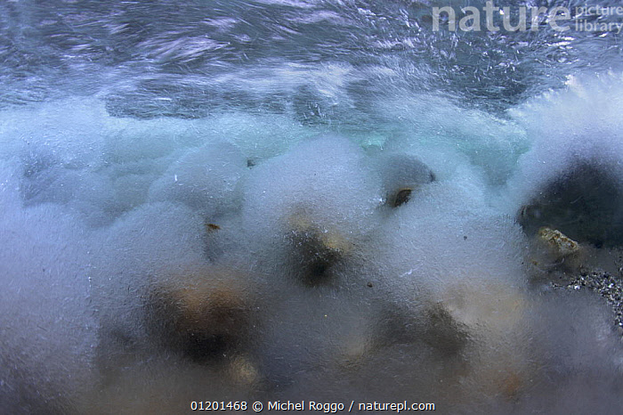 Underwater landscape in Hongrin River with ice on the river bed and surface in winter. Fribourg, Gruy�re, Switzerland, December, ABSTRACT,AQUATIC,EUROPE,FRESHWATER,GRUYERE,ICE,LANDSCAPES,RIVERBED,RIVERS,ROCKS,SURFACE,TEMPERATE,TURBULENCE,TURBULENT,UNDERWATER,WINTER, Michel Roggo