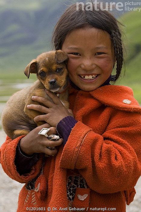 Tibetan child holding puppy dog. Ganzi-Yushu, Sichuan Province, China, ASIA,BABIES,CANIS,CHILDREN,CHINA,DOGS,GIRL,HAPPY,PEOPLE,PETS,PORTRAITS,PUPPIES,VERTICAL, Dr. Axel Gebauer