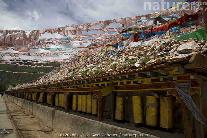 Gyanag Mani wall, with millions of Tibetan mani stones, is the largest in the world. Yushu, Qinghai Province, Tibet, China, ARTIFACTS,ASIA,BUDDHISM,BUDDHIST,BUILDINGS,CULTURE,LANDSCAPES,PEOPLE,PRAYER FLAGS,RELIGION,TRADITIONAL,WALLS,WORSHIP,CHINA, Dr. Axel Gebauer