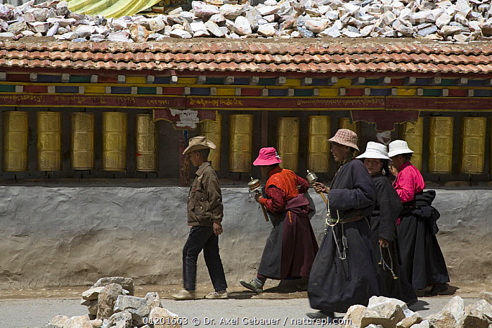People carrying prayer wheels at Gyanag Mani wall, with millions of Tibetan mani stones, is the largest in the world. Yushu, Qinghai Province, Tibet, China, ARTIFACTS,ASIA,BUDDHISM,BUDDHIST,BUILDINGS,CULTURE,GROUPS,PEOPLE,RELIGION,TRADITIONAL,WALLS,WORSHIP,CHINA, Dr. Axel Gebauer