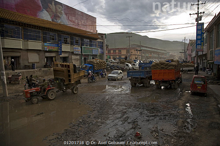 Muddy road after rain in the Yushu Tibetan Autonomous Prefecture, Qinghai Province, Tibet, China, ASIA,BUILDINGS,CITIES,LANDSCAPES,MUD,ROADS,TOWNS,VEHICLES,CHINA, Dr. Axel Gebauer